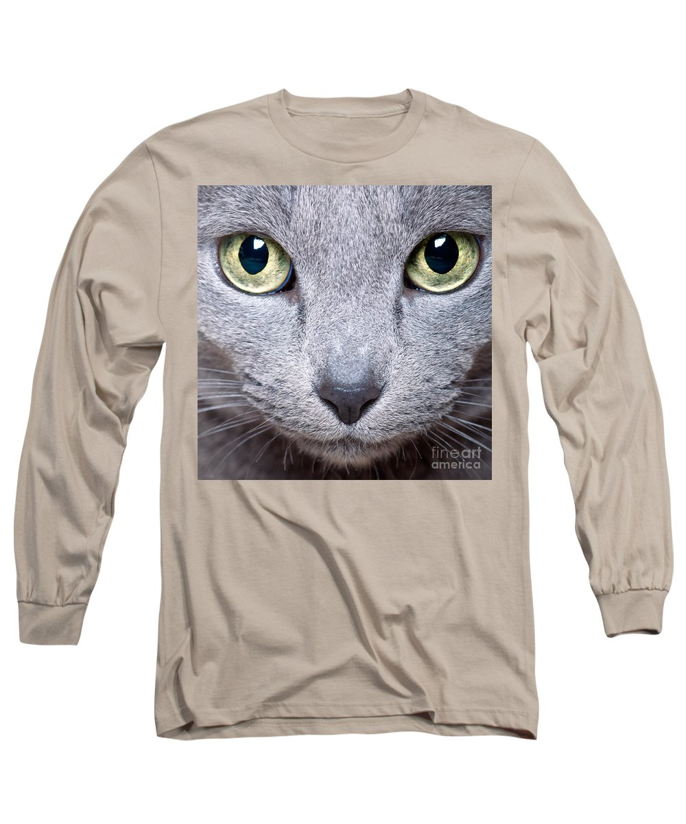 Cat Long Sleeve T-Shirt featuring the photograph Cat Eyes by Nailia Schwarz