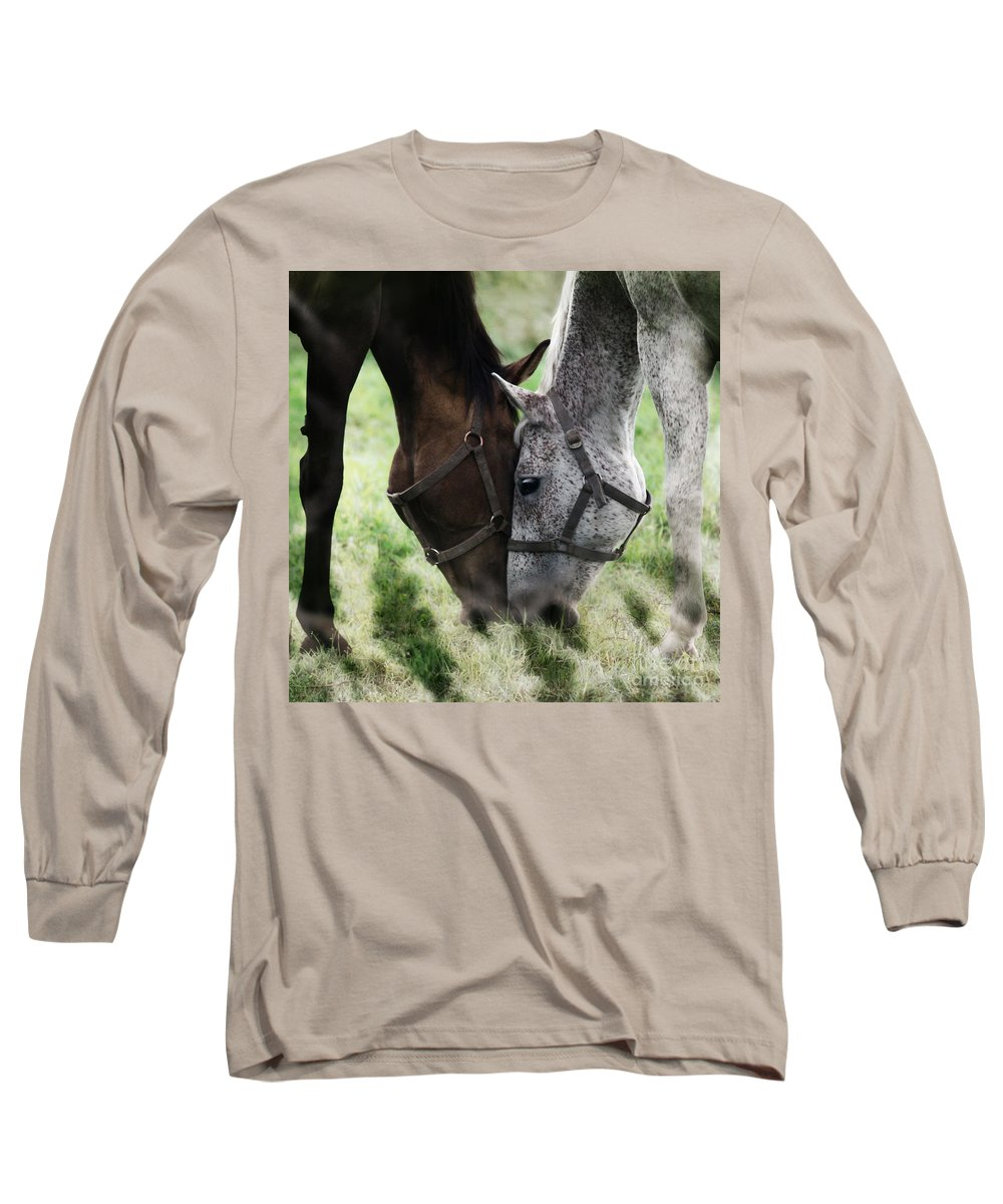 Horses Long Sleeve T-Shirt featuring the photograph Together by Angel Ciesniarska