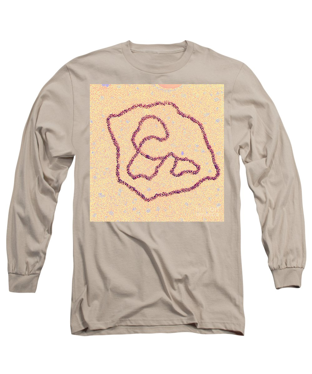 Biology Long Sleeve T-Shirt featuring the photograph Viral Dna Rings by Science Source