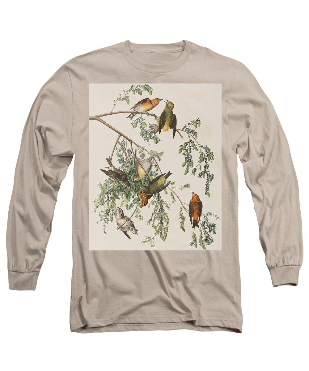 Crossbill Long Sleeve T-Shirts