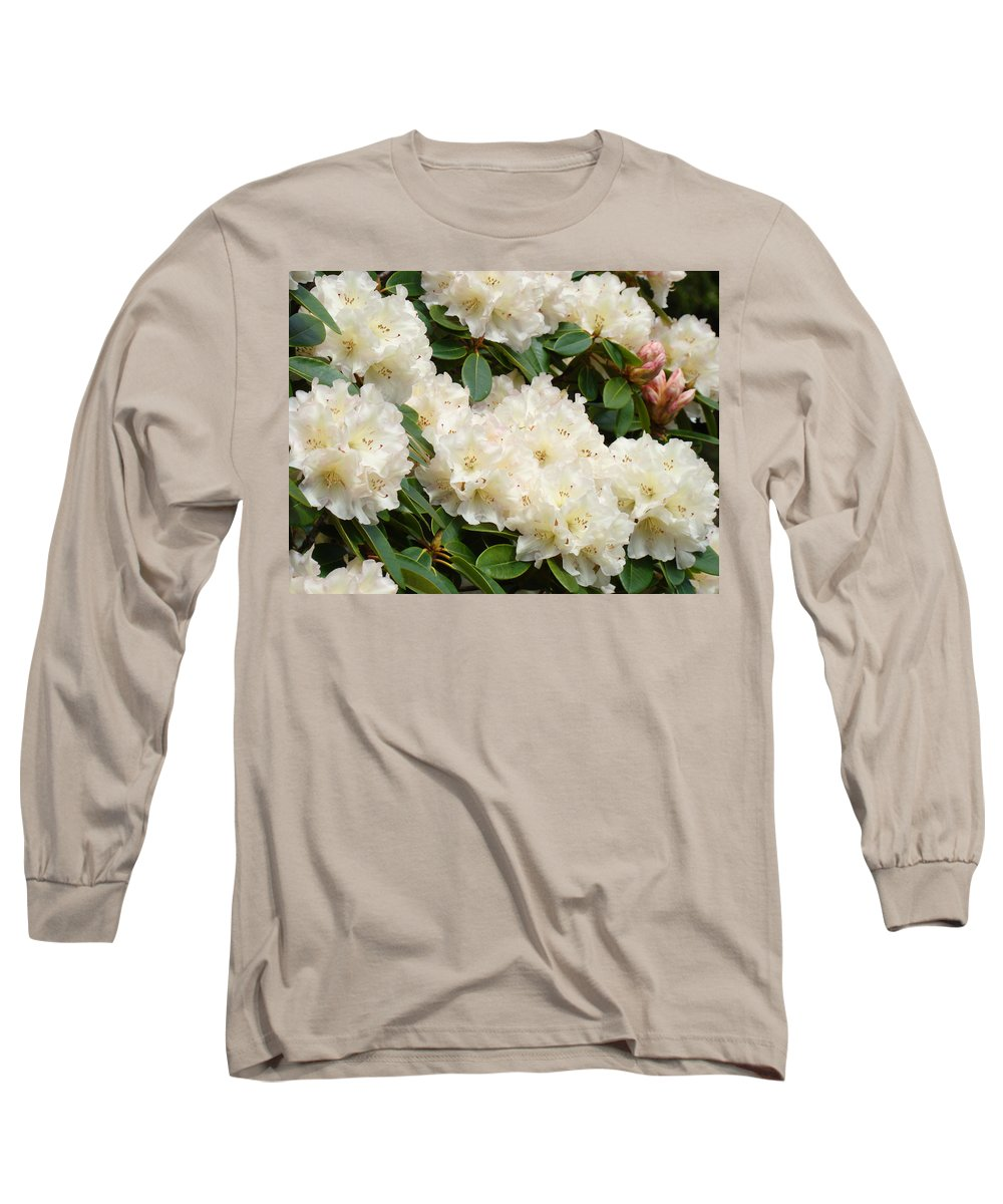 �azaleas Artwork� Long Sleeve T-Shirt featuring the photograph Azaleas Rhodies Landscape White Pink Rhododendrum Flowers 8 Giclee Art Prints Baslee Troutman by Baslee Troutman