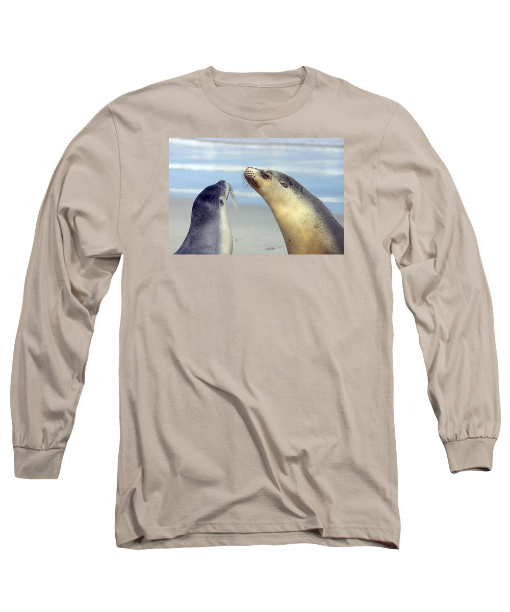 Sea Lion Long Sleeve T-Shirt featuring the photograph Backtalk by Mike Dawson