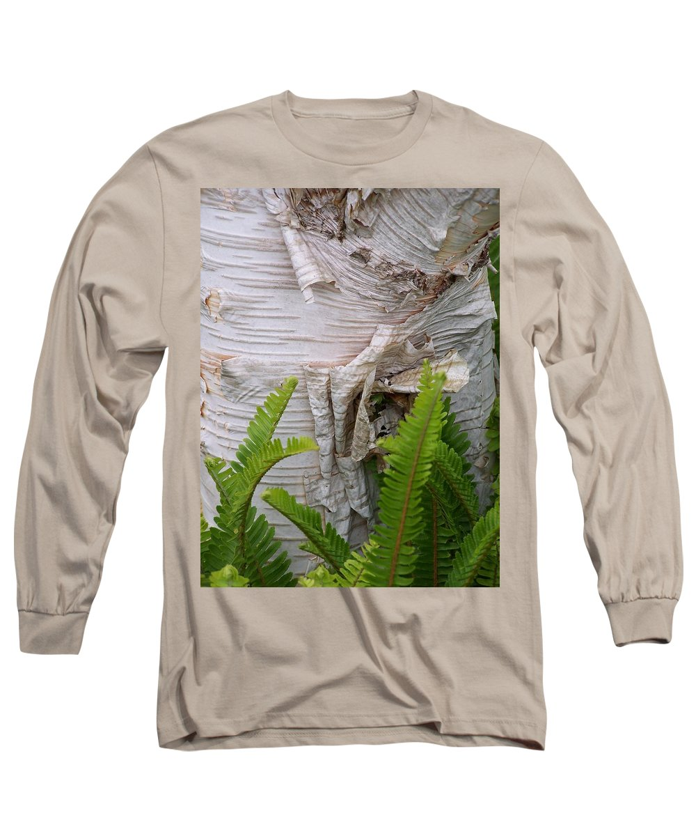 Tree Long Sleeve T-Shirt featuring the photograph Birch Fern by Gale Cochran-Smith