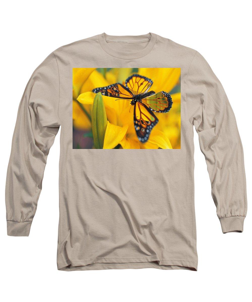 Butterfly Long Sleeve T-Shirt featuring the digital art Butterfly by Tim Allen