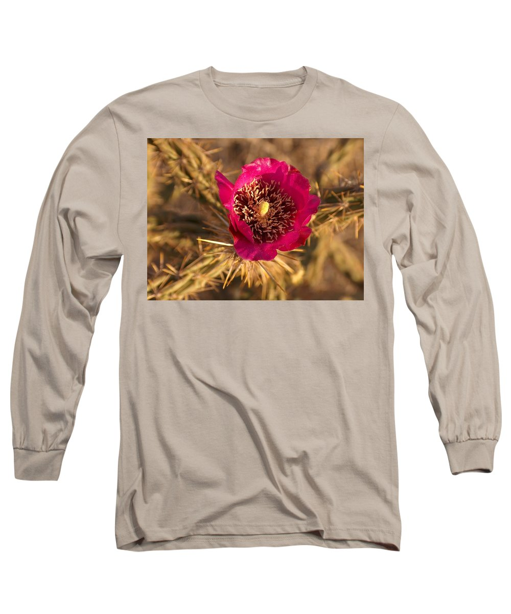 Cactus Flowers Wildflowers Long Sleeve T-Shirt featuring the photograph Cactus Flower 1 by Tim McCarthy