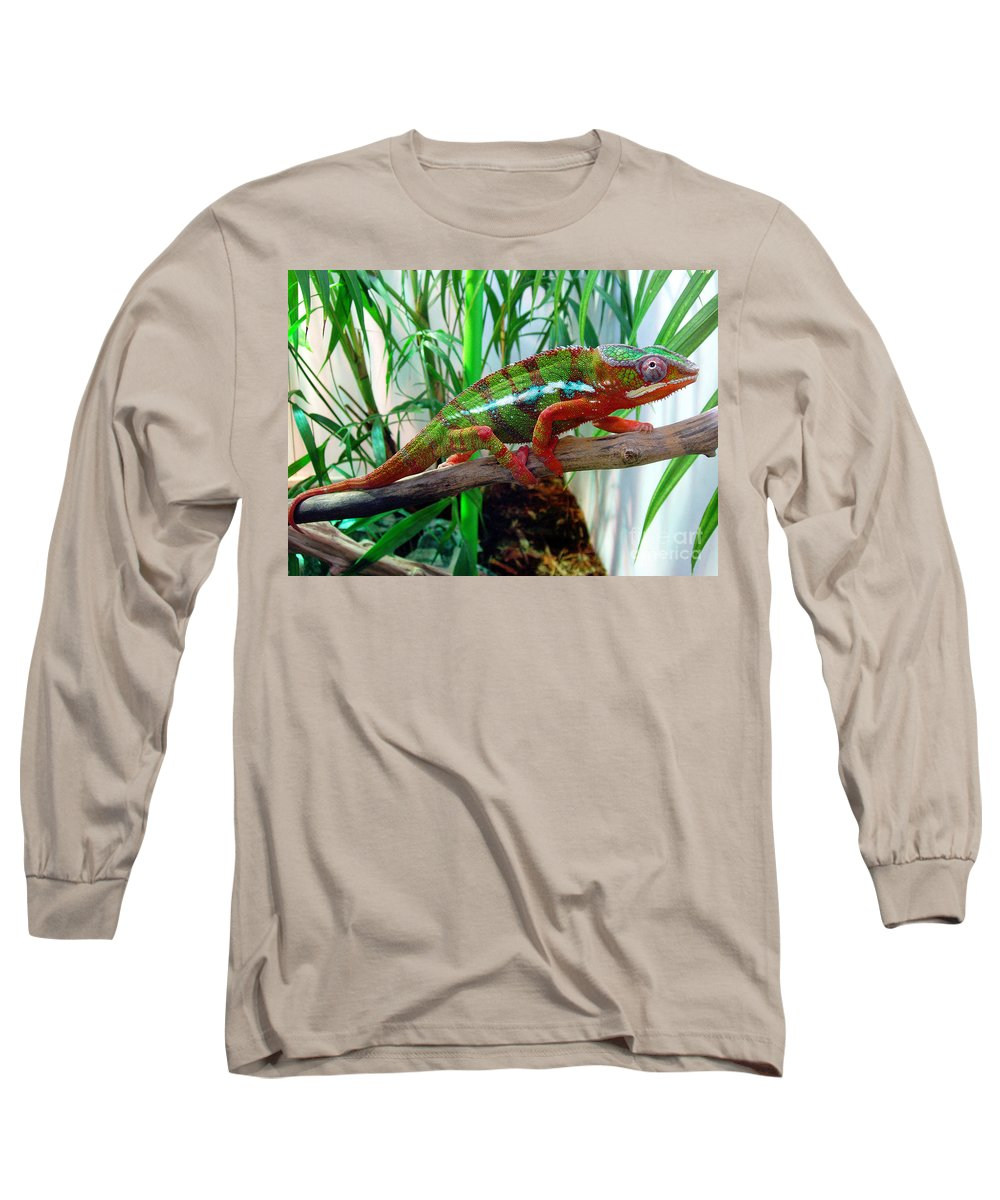 Chameleon Long Sleeve T-Shirt featuring the photograph Colorful Chameleon by Nancy Mueller
