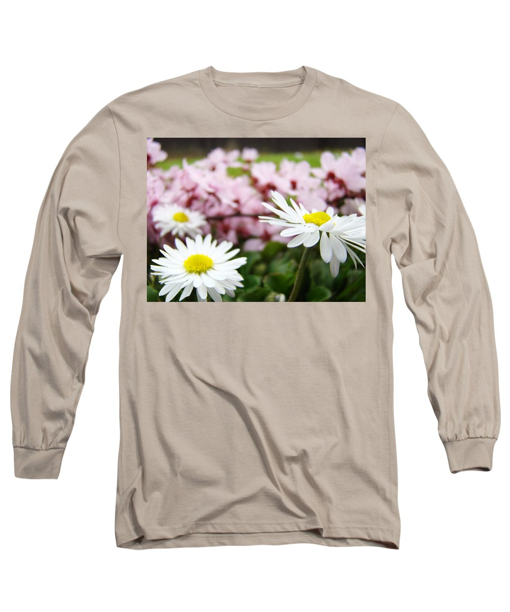 Daisies Long Sleeve T-Shirt featuring the photograph Daisies Flowers Art Prints Spring Flowers Artwork Garden Nature Art by Baslee Troutman