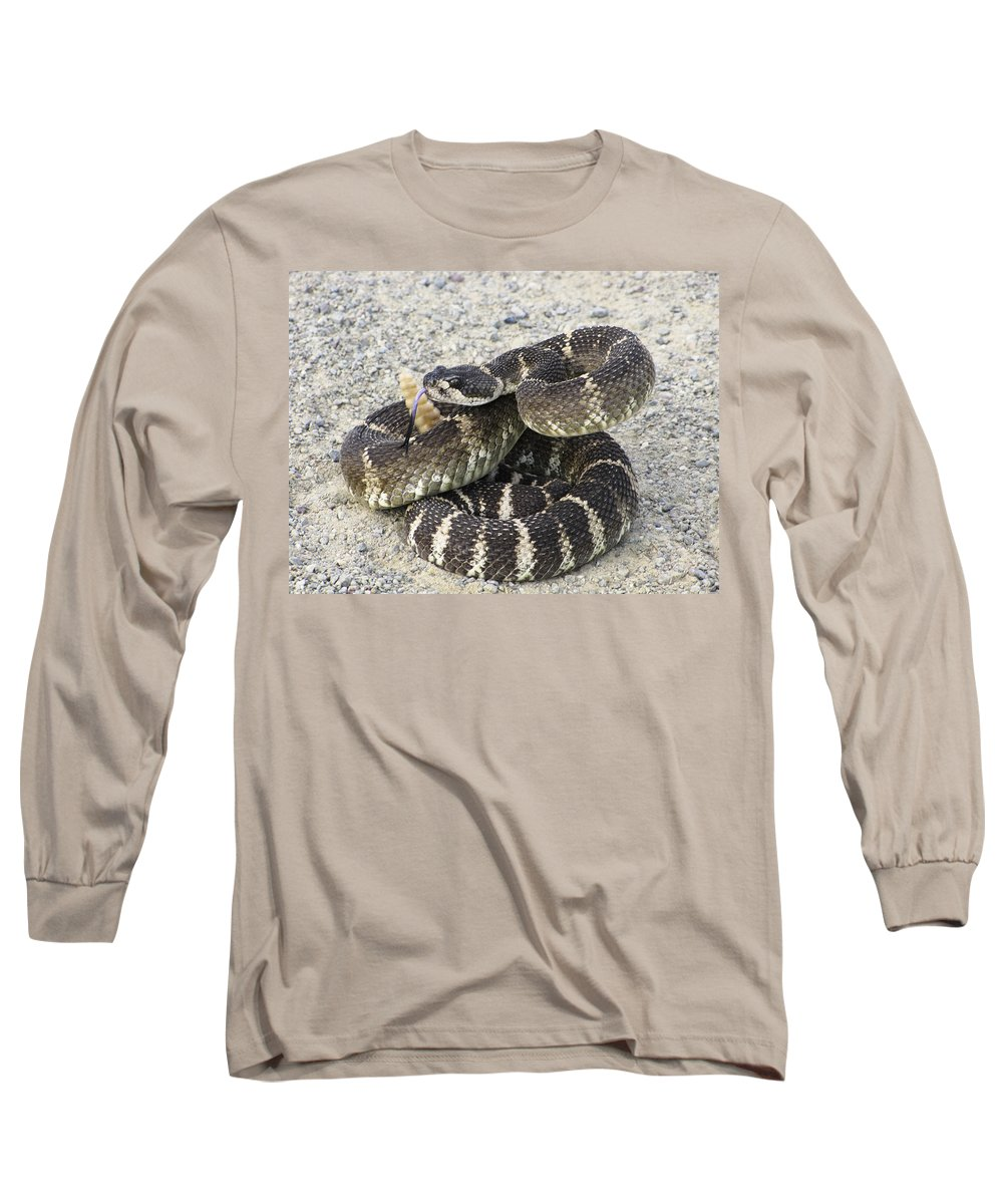 Rattlesnake Long Sleeve T-Shirt featuring the photograph Don't Step On Me by Karen W Meyer