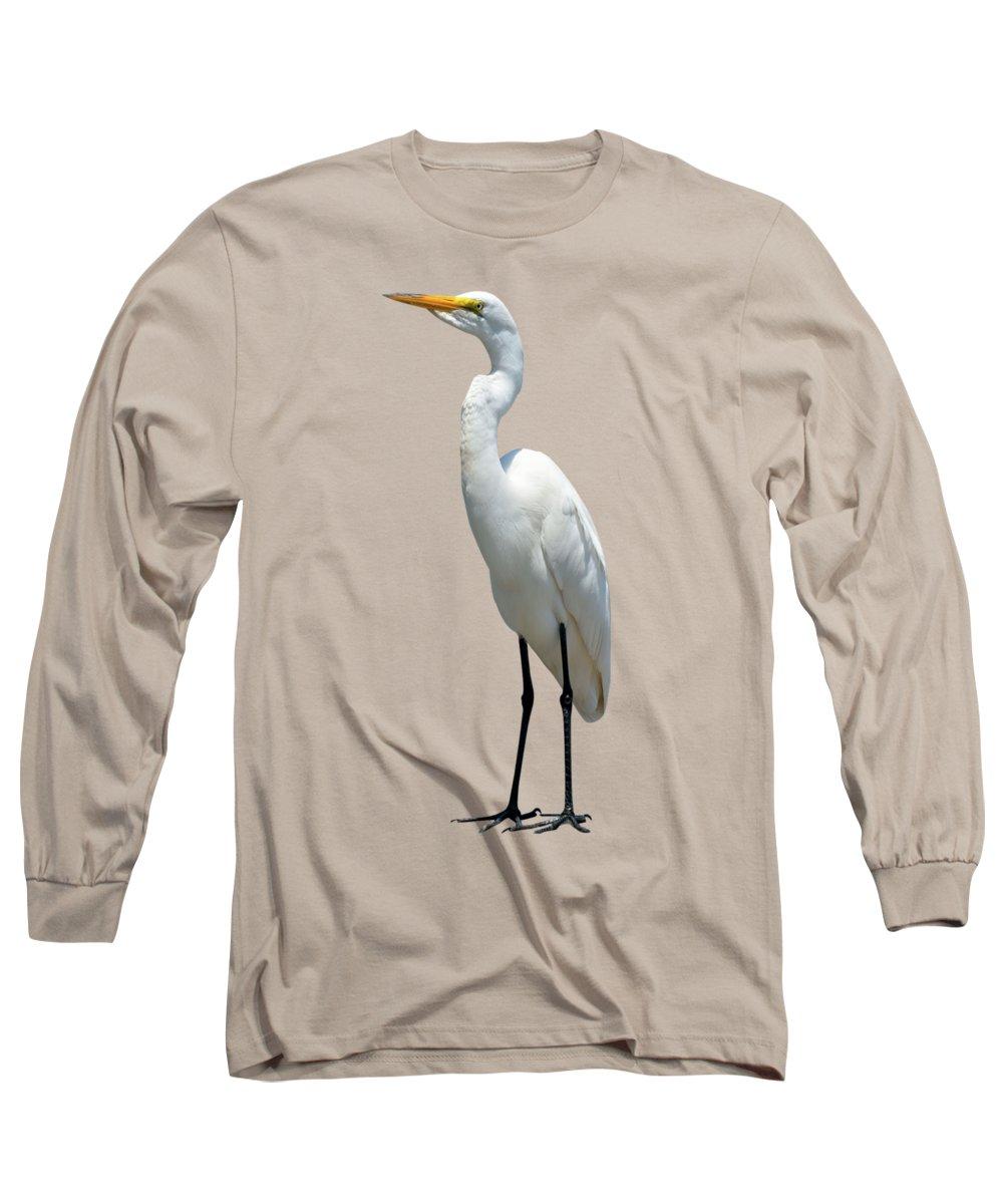 Eastern Great Egret Long Sleeve T-Shirt featuring the photograph Eastern Great Egret Ardea Alba Modesta by David Dehner