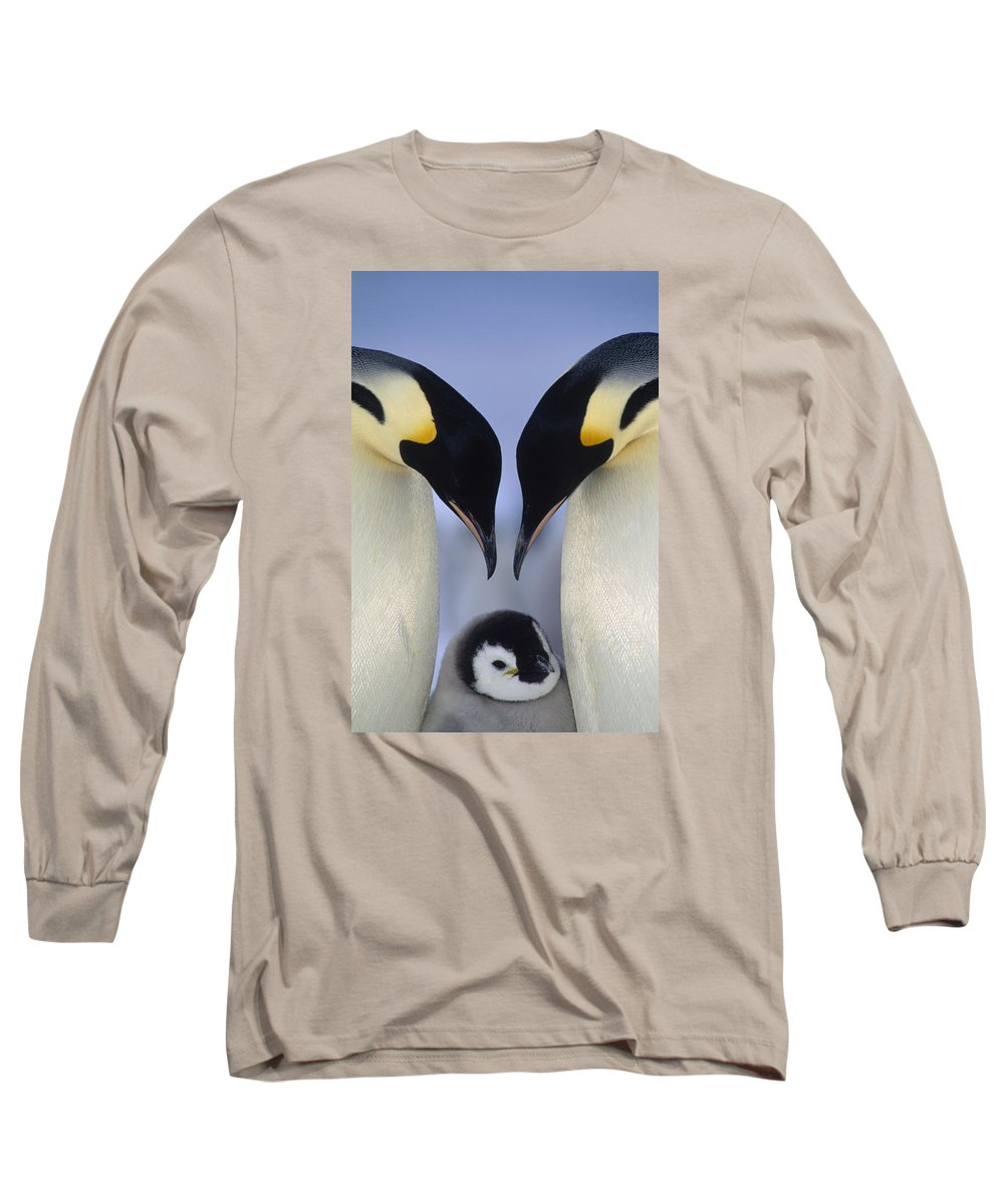 00140140 Long Sleeve T-Shirt featuring the photograph Emperor Penguin Family by Tui De Roy