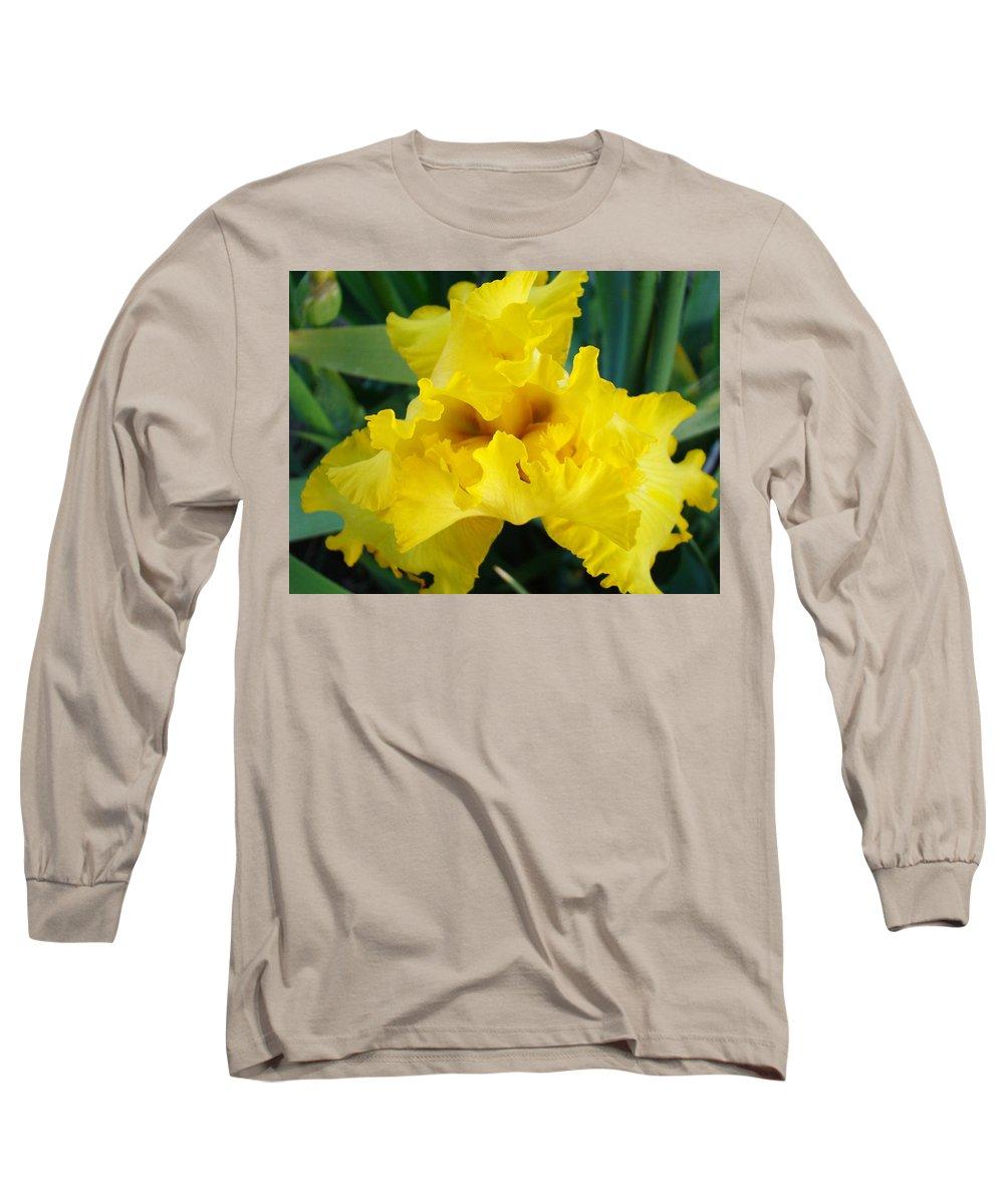 �irises Artwork� Long Sleeve T-Shirt featuring the photograph Golden Yellow Iris Flower Garden Irises Flora Art Prints Baslee Troutman by Baslee Troutman