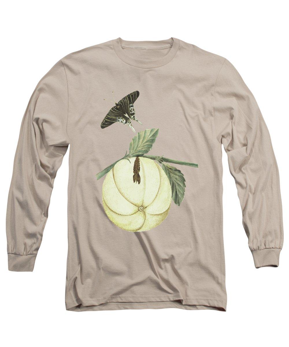 Grapefruit Long Sleeve T-Shirts