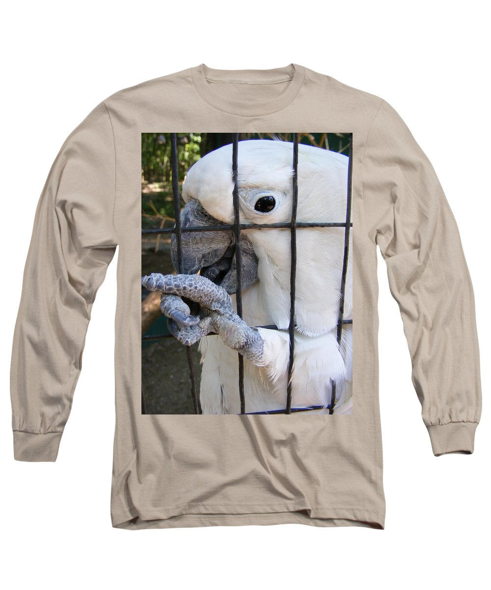 Bird Long Sleeve T-Shirt featuring the photograph Hand Me The Key Please by Ed Smith