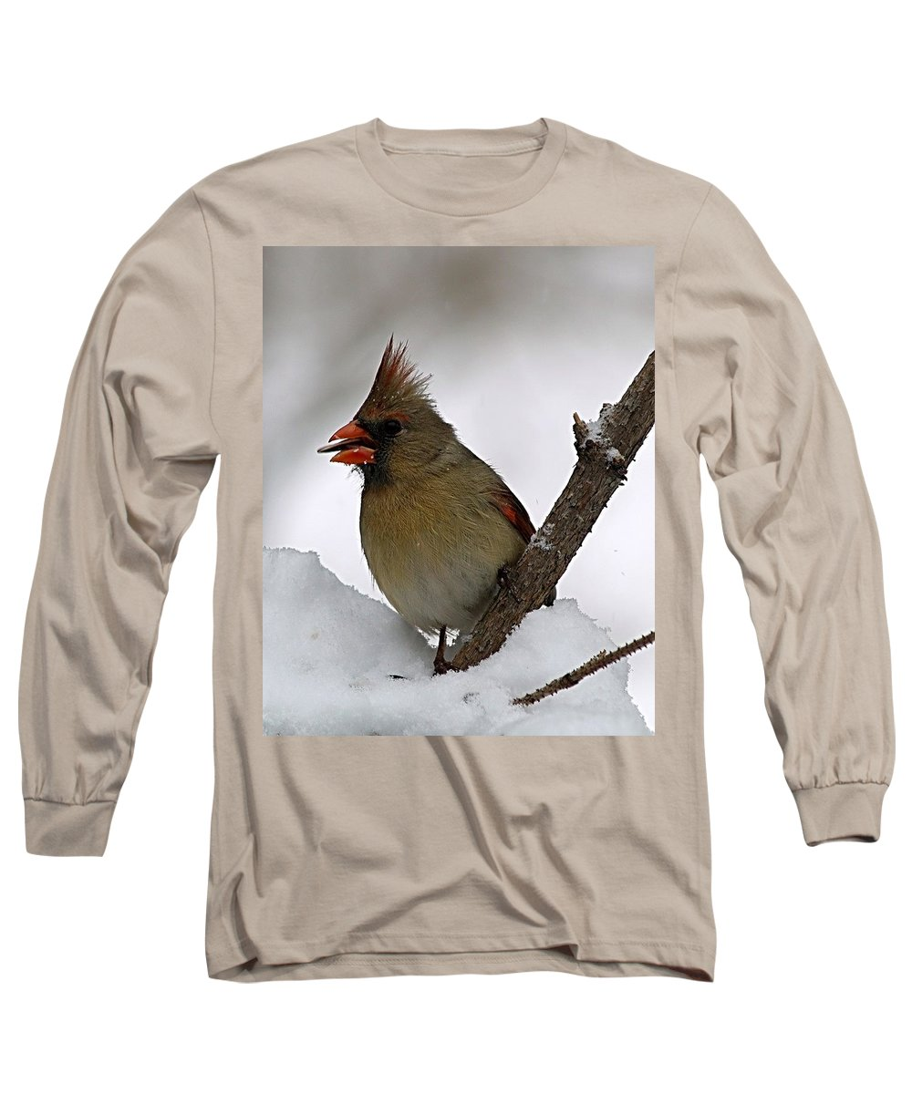Bird Long Sleeve T-Shirt featuring the photograph I Love Seeds by Gaby Swanson