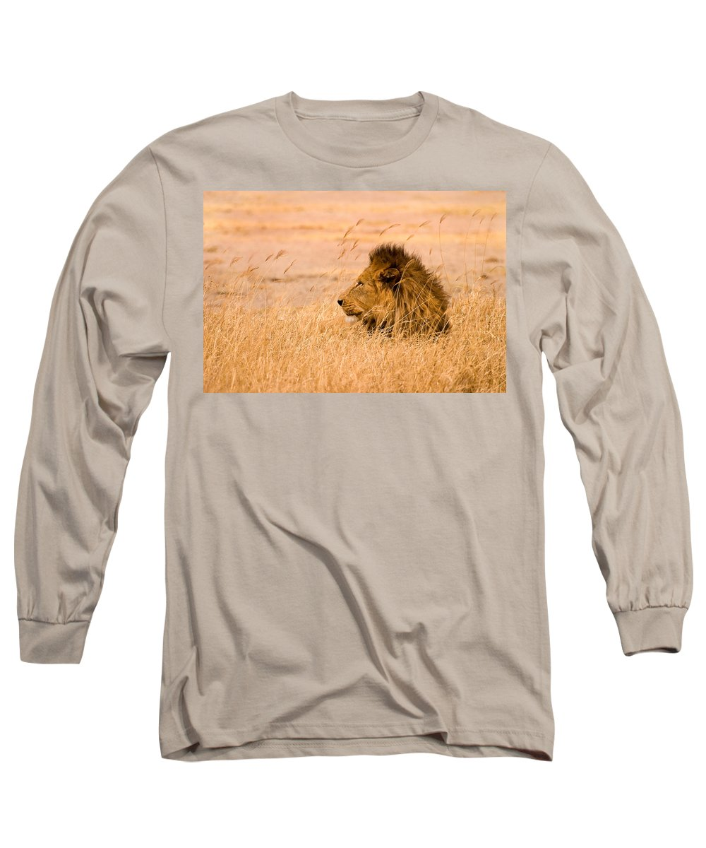 3scape Long Sleeve T-Shirt featuring the photograph King Of The Pride by Adam Romanowicz