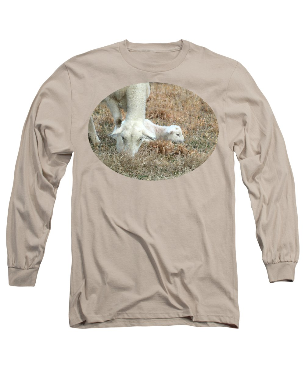 L Is For Lamb Long Sleeve T-Shirt featuring the photograph L Is For Lamb by Anita Faye