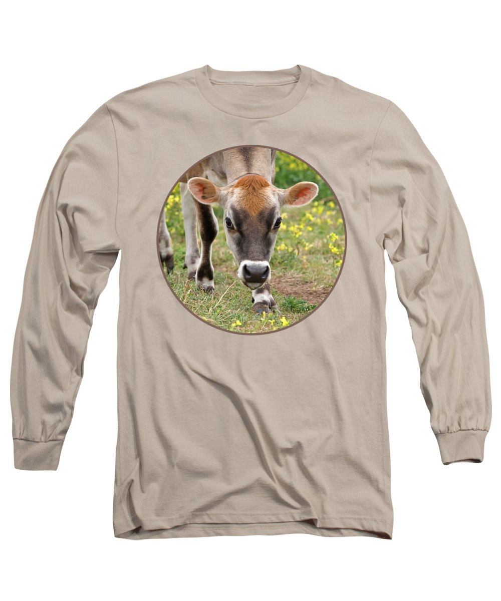 Jersey Cow Long Sleeve T-Shirt featuring the photograph Look Into My Eyes - Jersey Cow - Square by Gill Billington