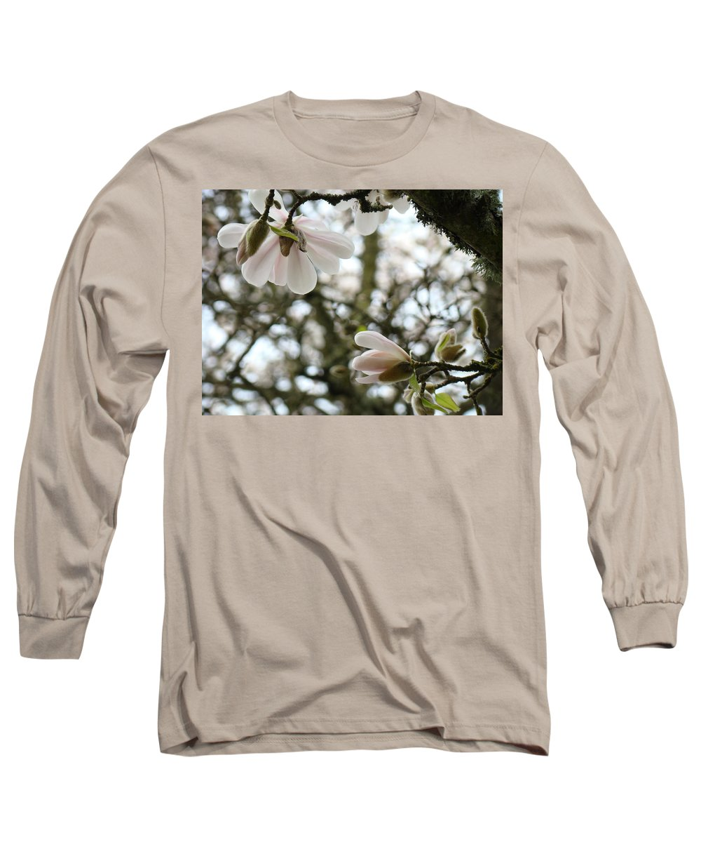 Magnolia Long Sleeve T-Shirt featuring the photograph Magnolia Tree Flowers Pink White Magnolia Flowers Spring Artwork by Baslee Troutman