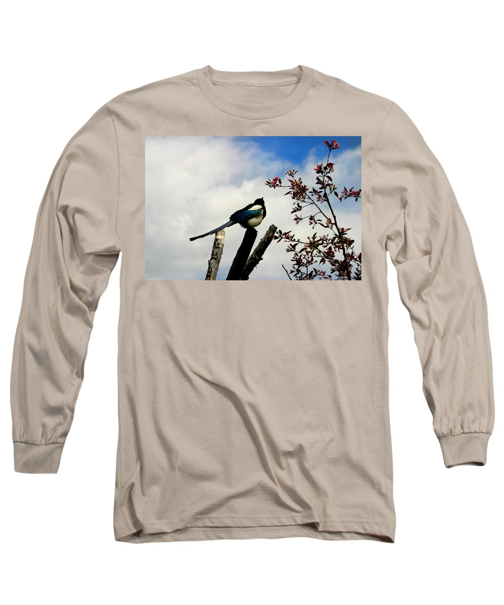Magpie Long Sleeve T-Shirt featuring the photograph Magpie by Anthony Jones