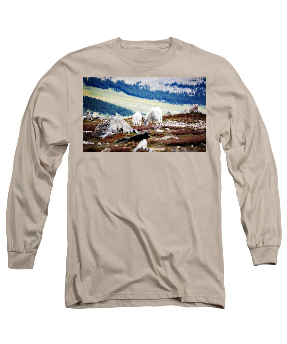 Animal Long Sleeve T-Shirt featuring the photograph Mountain Goats 2 by Marilyn Hunt