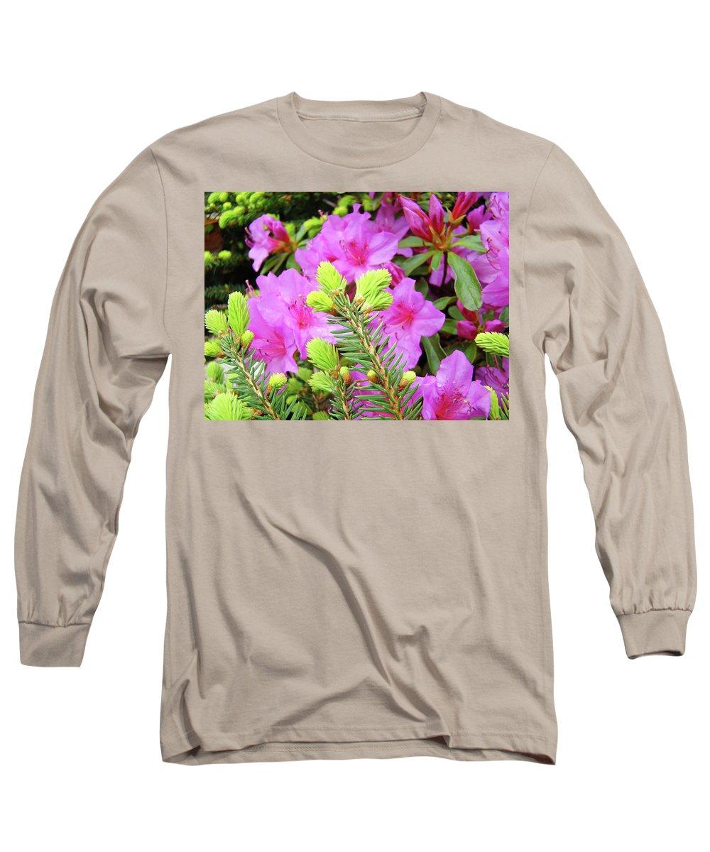 Office Long Sleeve T-Shirt featuring the photograph Office Art Pine Conifer Pink Azalea Flowers 38 Azaleas Giclee Art Prints Baslee Troutman by Baslee Troutman
