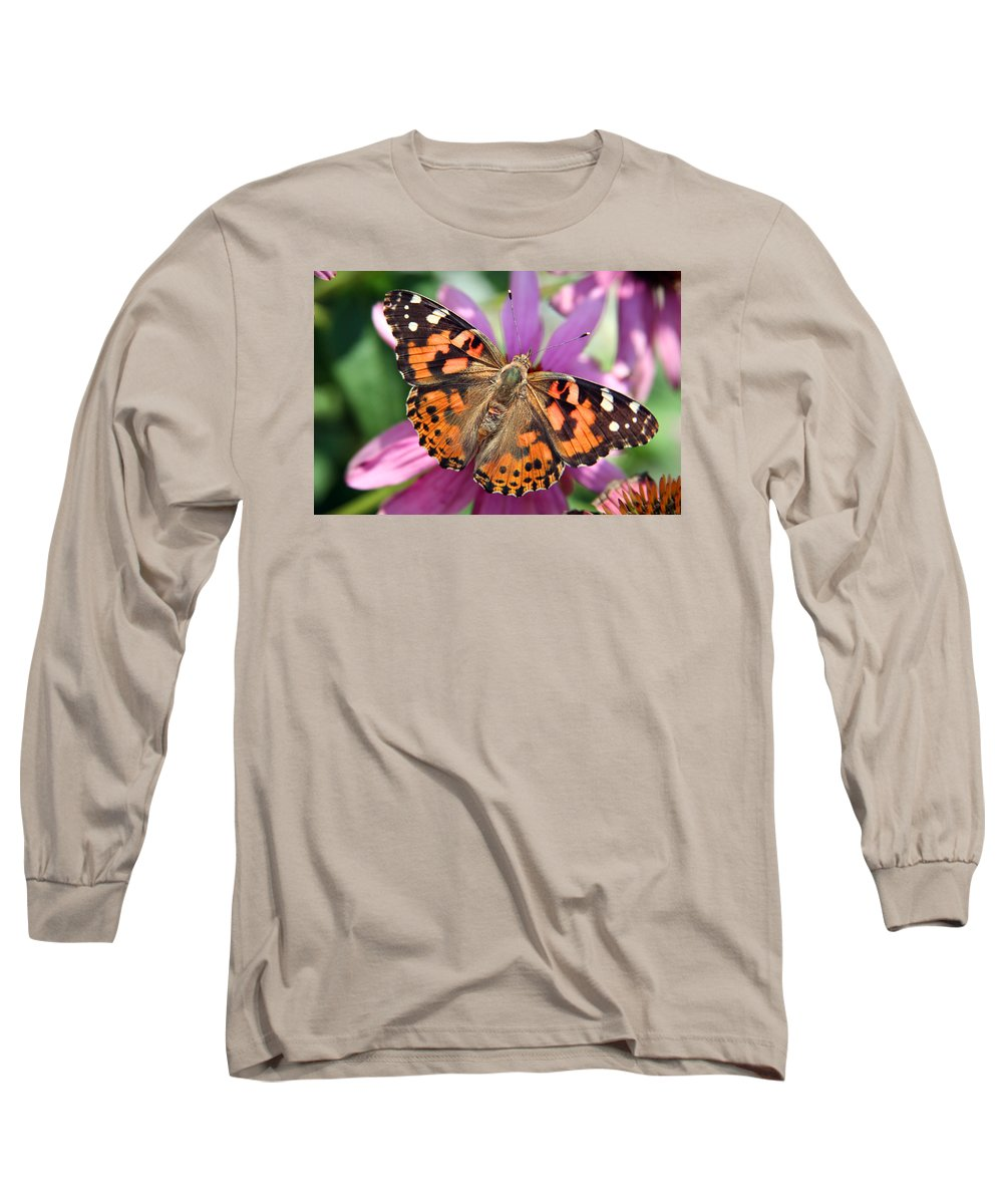Painted Lady Long Sleeve T-Shirt featuring the photograph Painted Lady Butterfly by Margie Wildblood