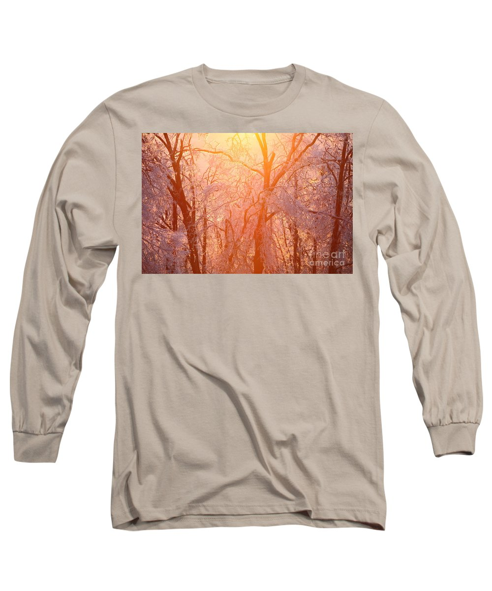Pink Long Sleeve T-Shirt featuring the photograph Pink And Gold by Nadine Rippelmeyer