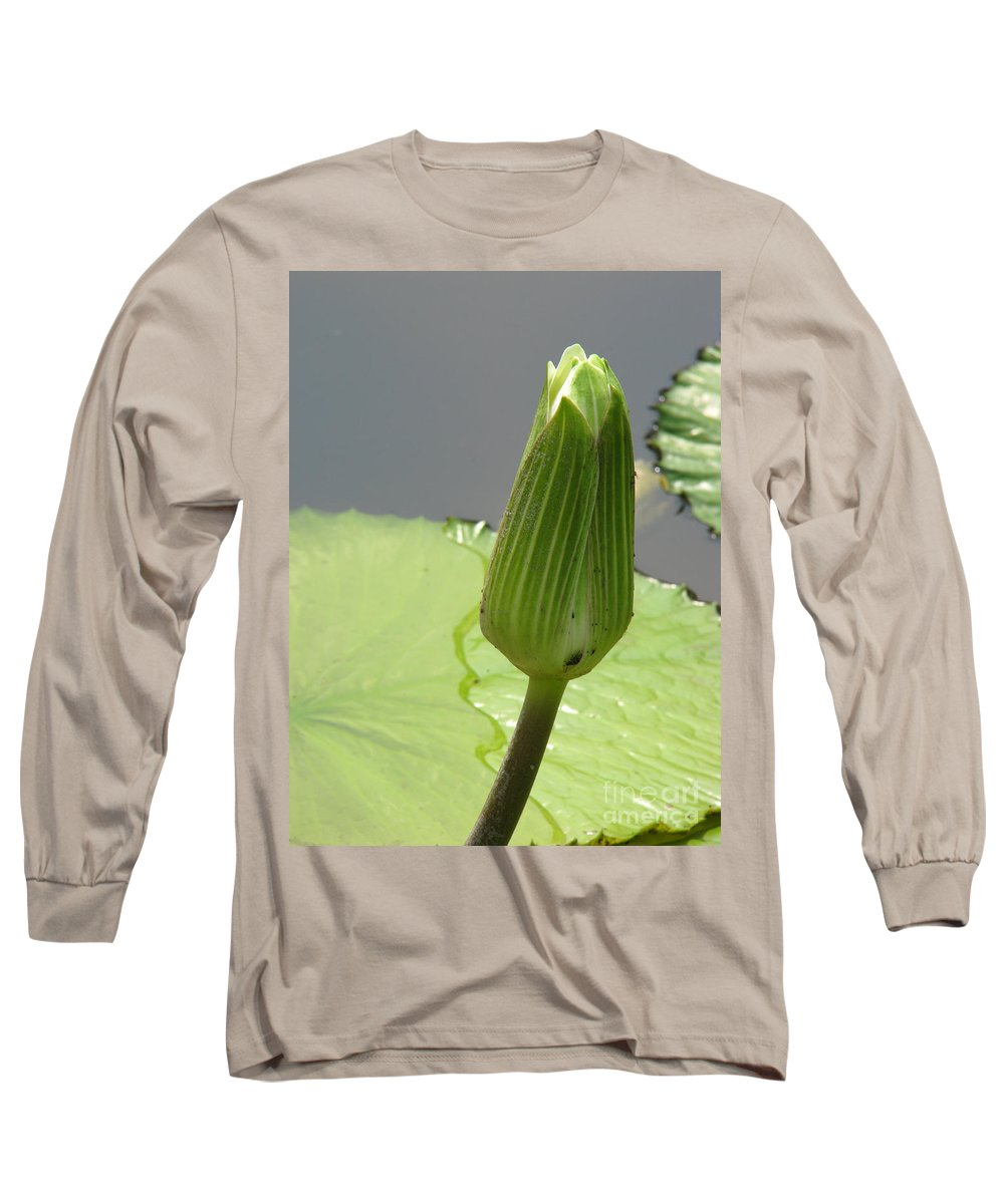 Lilly Long Sleeve T-Shirt featuring the photograph Ready To Bloom by Amanda Barcon