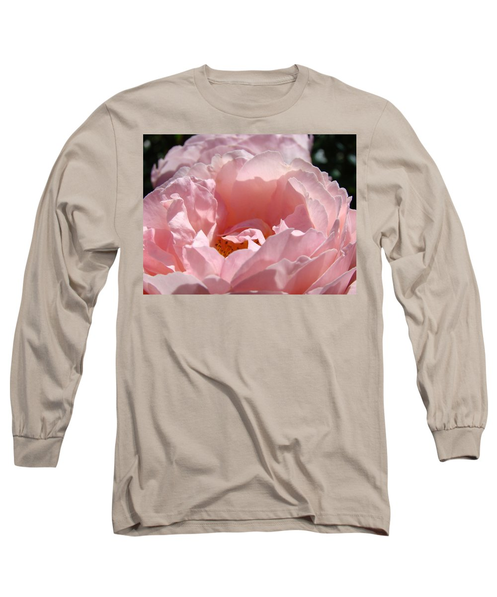 Rose Long Sleeve T-Shirt featuring the photograph Roses Pink Rose Flower 2 Rose Garden Art Baslee Troutman Collection by Baslee Troutman