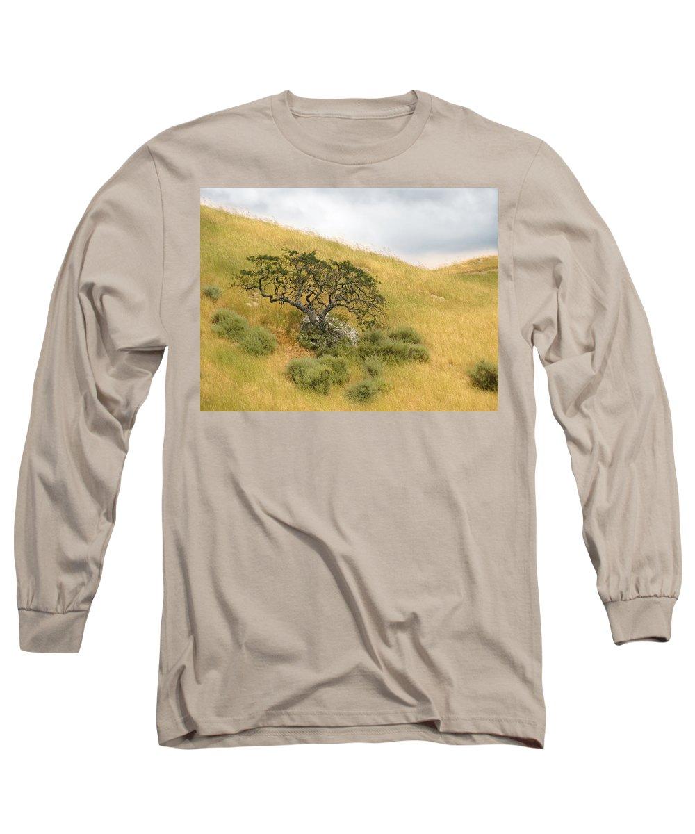 Landscape Long Sleeve T-Shirt featuring the photograph Sage Under Oak by Karen W Meyer