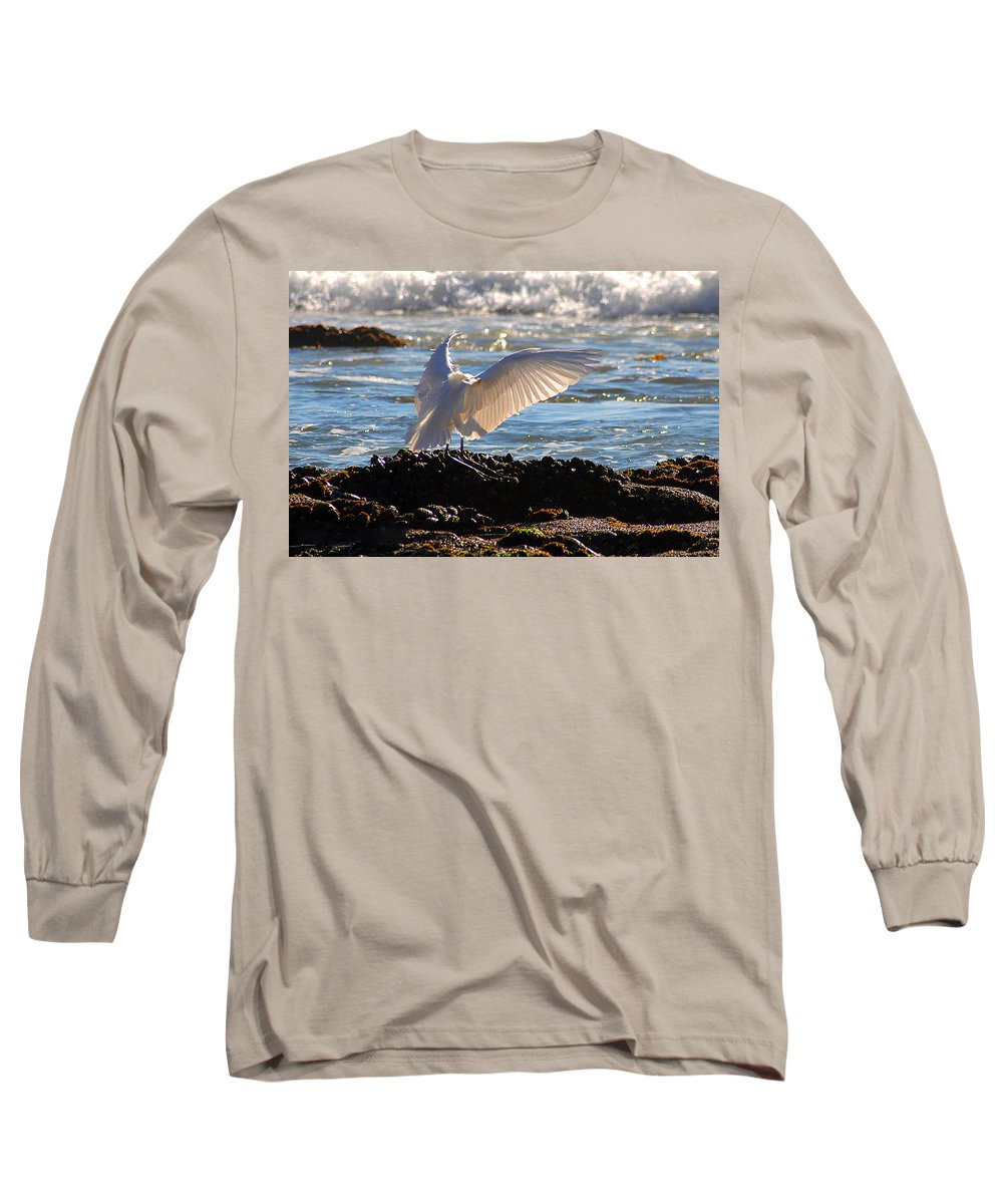 Clay Long Sleeve T-Shirt featuring the photograph Strut by Clayton Bruster