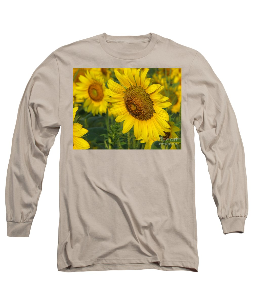 Sunflowers Long Sleeve T-Shirt featuring the photograph Sunflower Series by Amanda Barcon