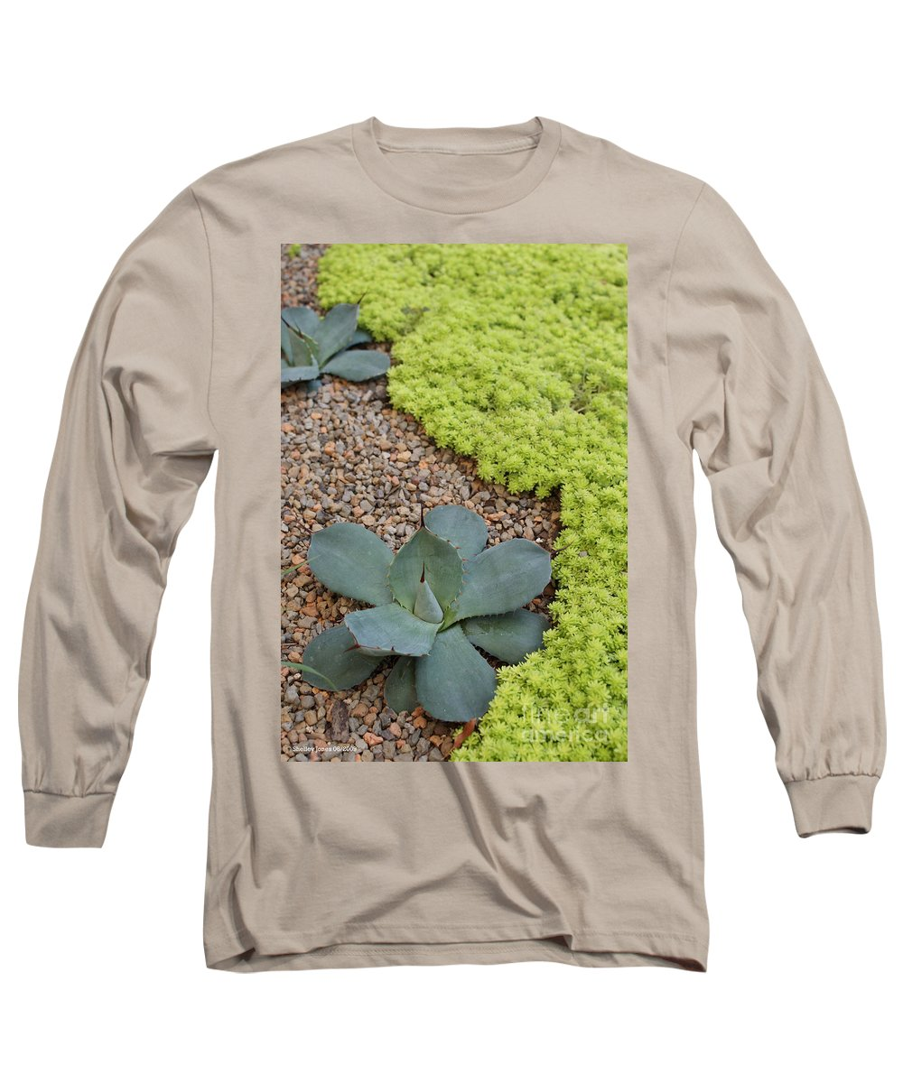 Cacti Long Sleeve T-Shirt featuring the photograph Texture by Shelley Jones