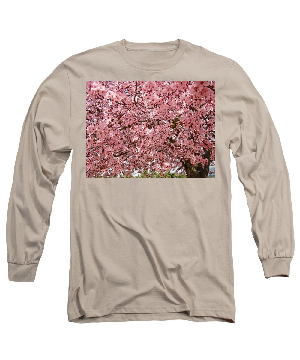 Tree Long Sleeve T-Shirt featuring the photograph Tree Blossoms Pink Blossoms Art Prints Giclee Flower Landscape Artwork by Baslee Troutman