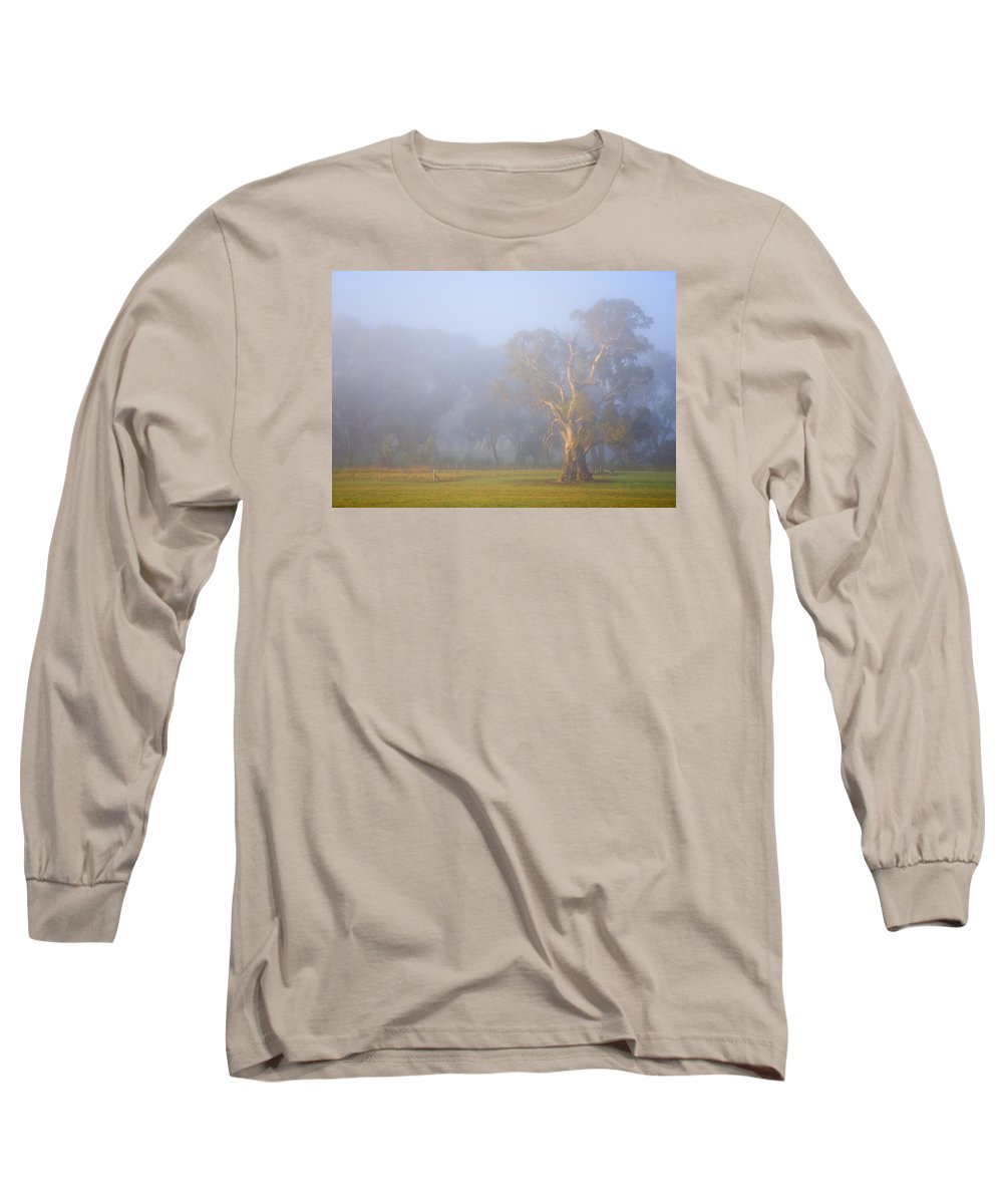 Tree Long Sleeve T-Shirt featuring the photograph White Gum Morning by Mike Dawson