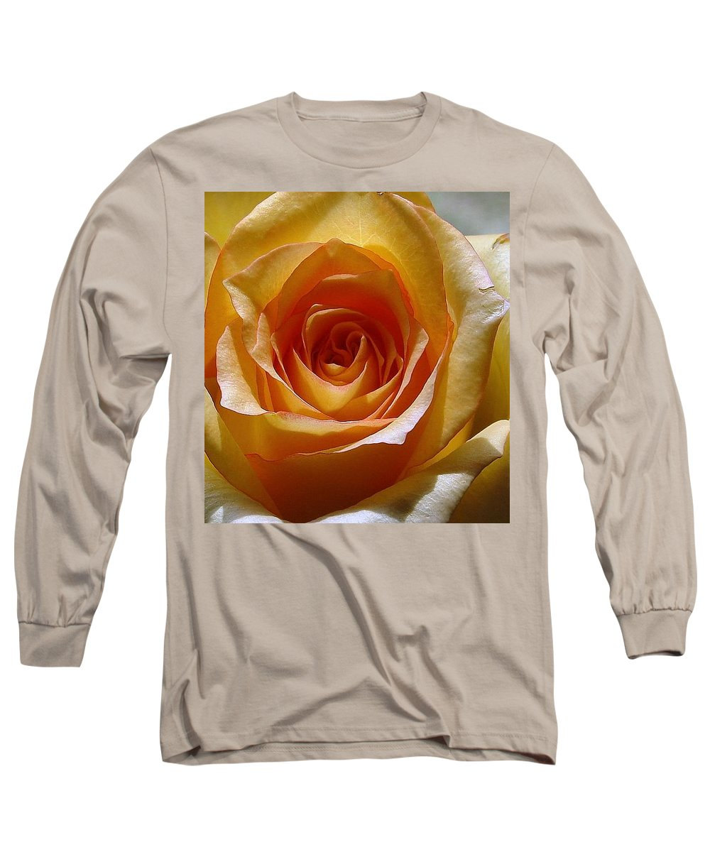 Rose Yellow Long Sleeve T-Shirt featuring the photograph Yellow Rose by Luciana Seymour