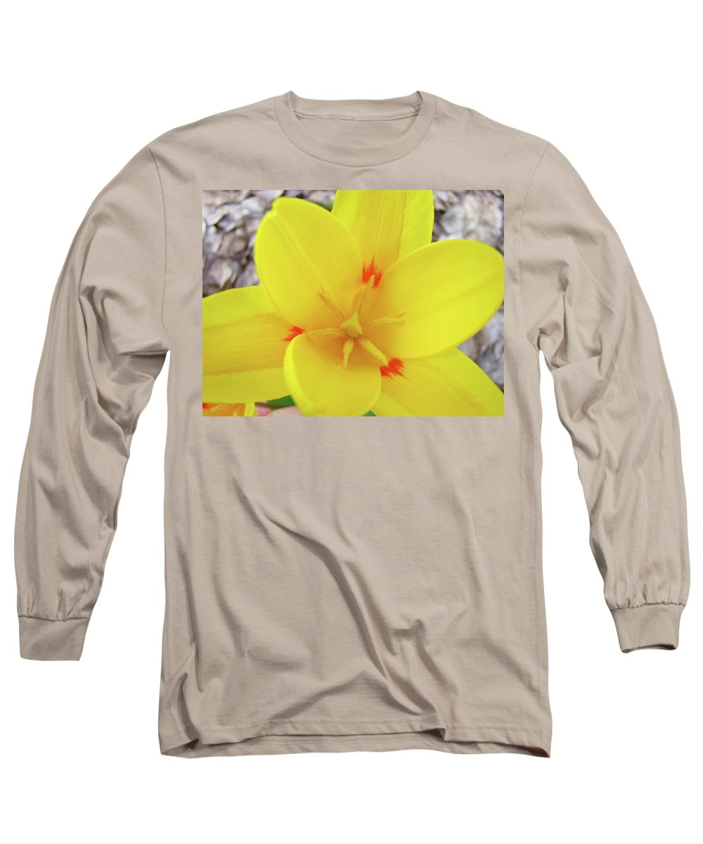 �tulips Artwork� Long Sleeve T-Shirt featuring the photograph Yellow Tulip Flower Spring Flowers Floral Art Prints by Baslee Troutman