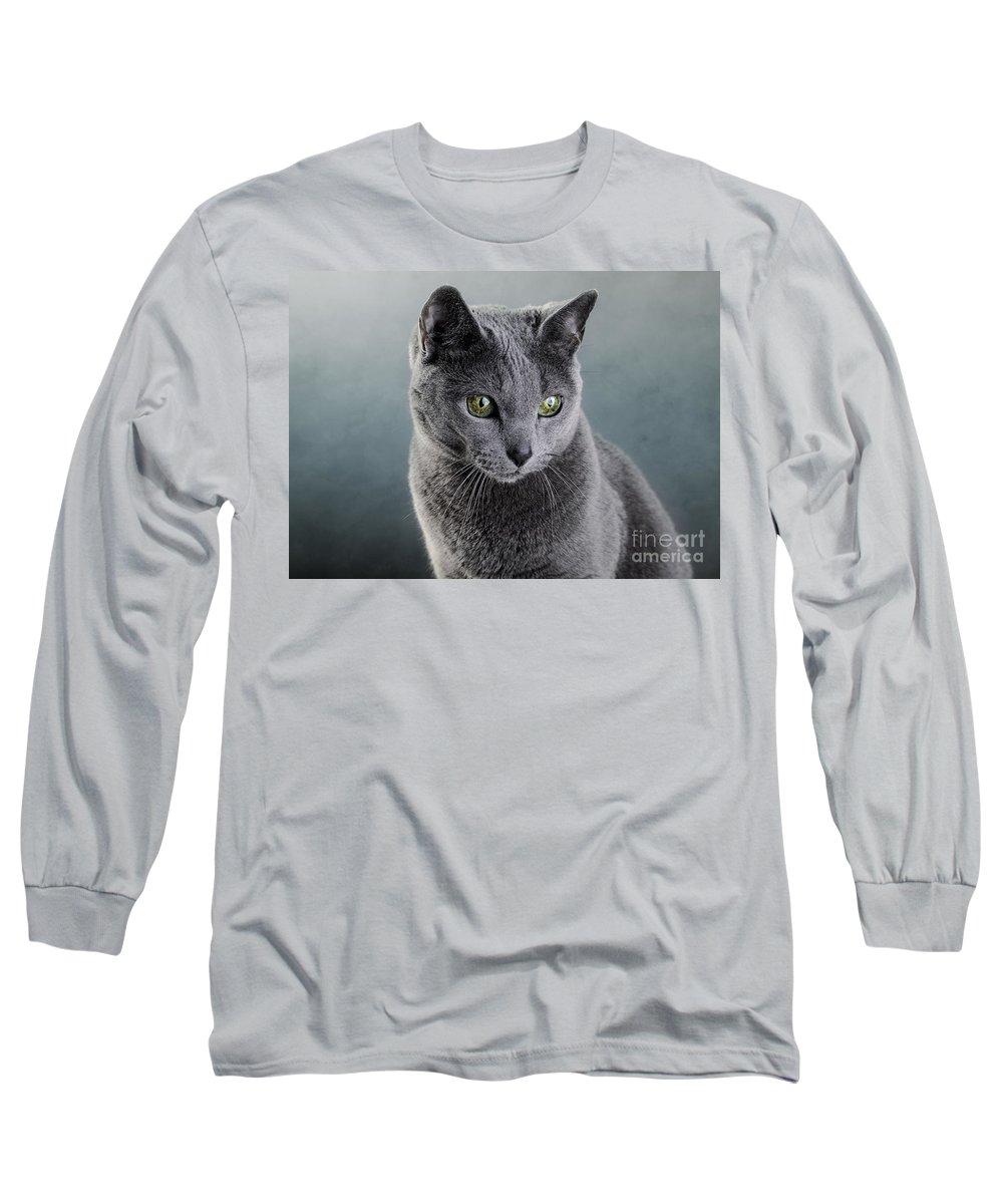 Cat Long Sleeve T-Shirt featuring the photograph Russian Blue Cat by Nailia Schwarz
