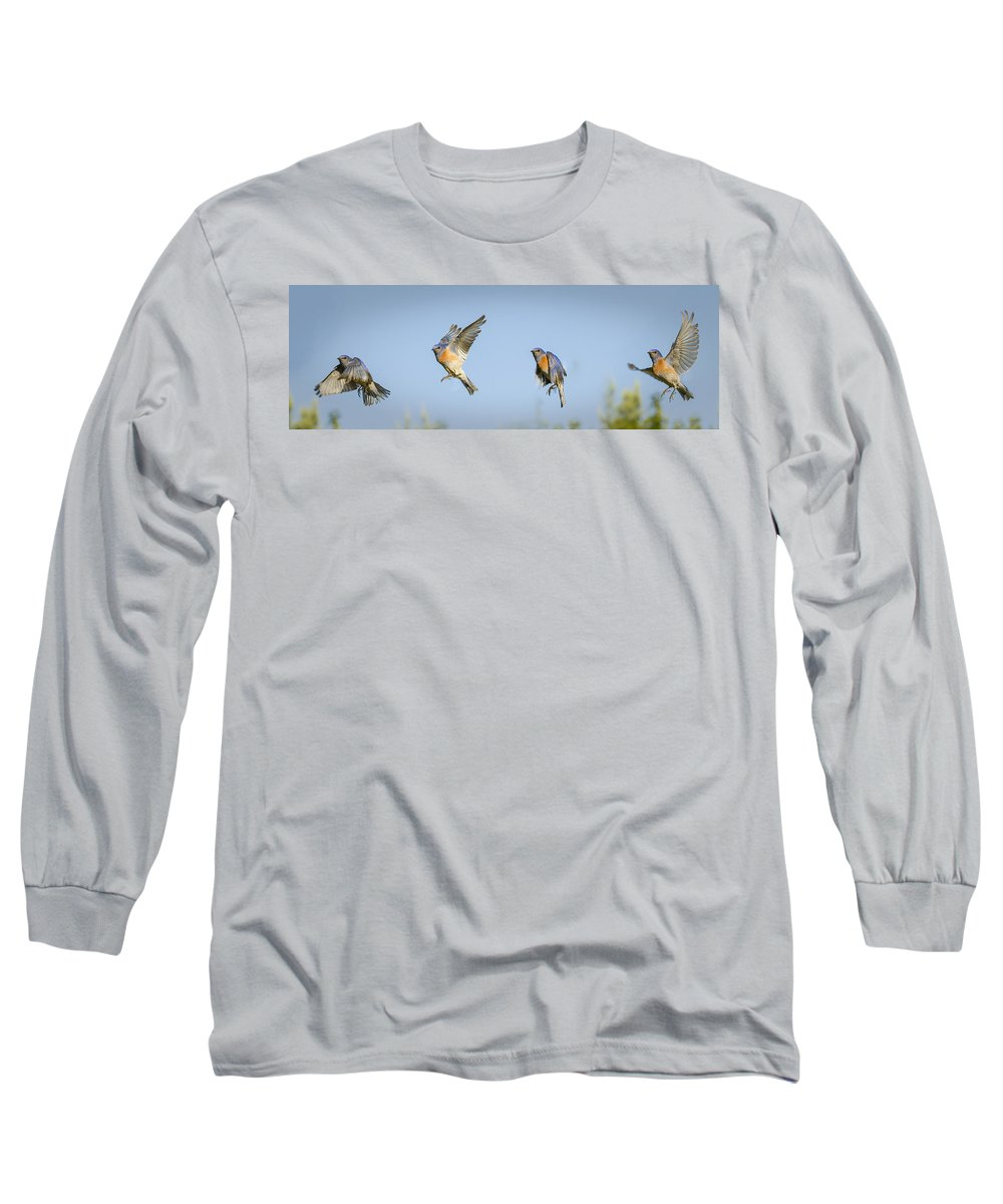 Bird In Flight Long Sleeve T-Shirts