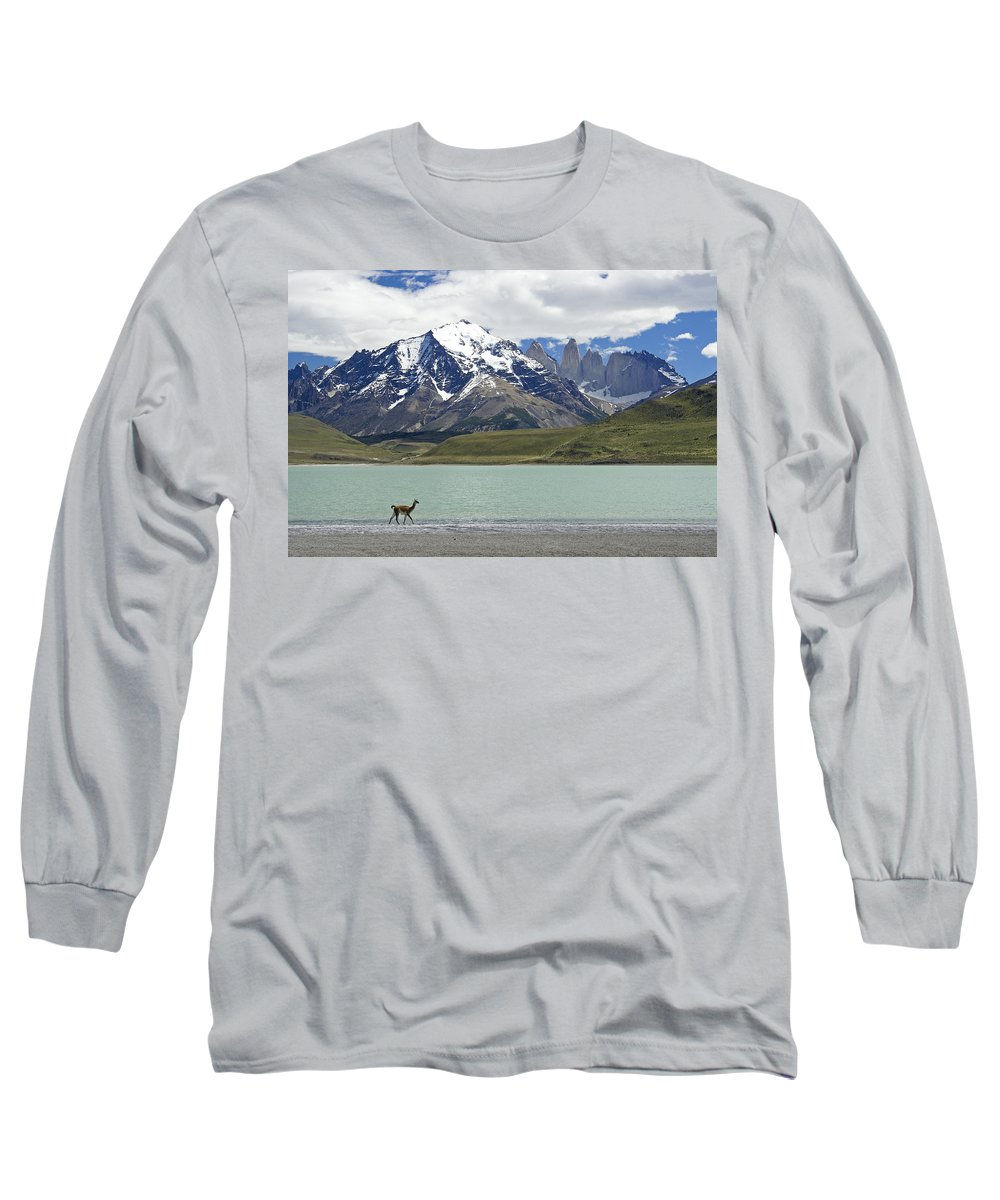 Chile Long Sleeve T-Shirt featuring the photograph Guanaco At Laguna Amarga by Michele Burgess