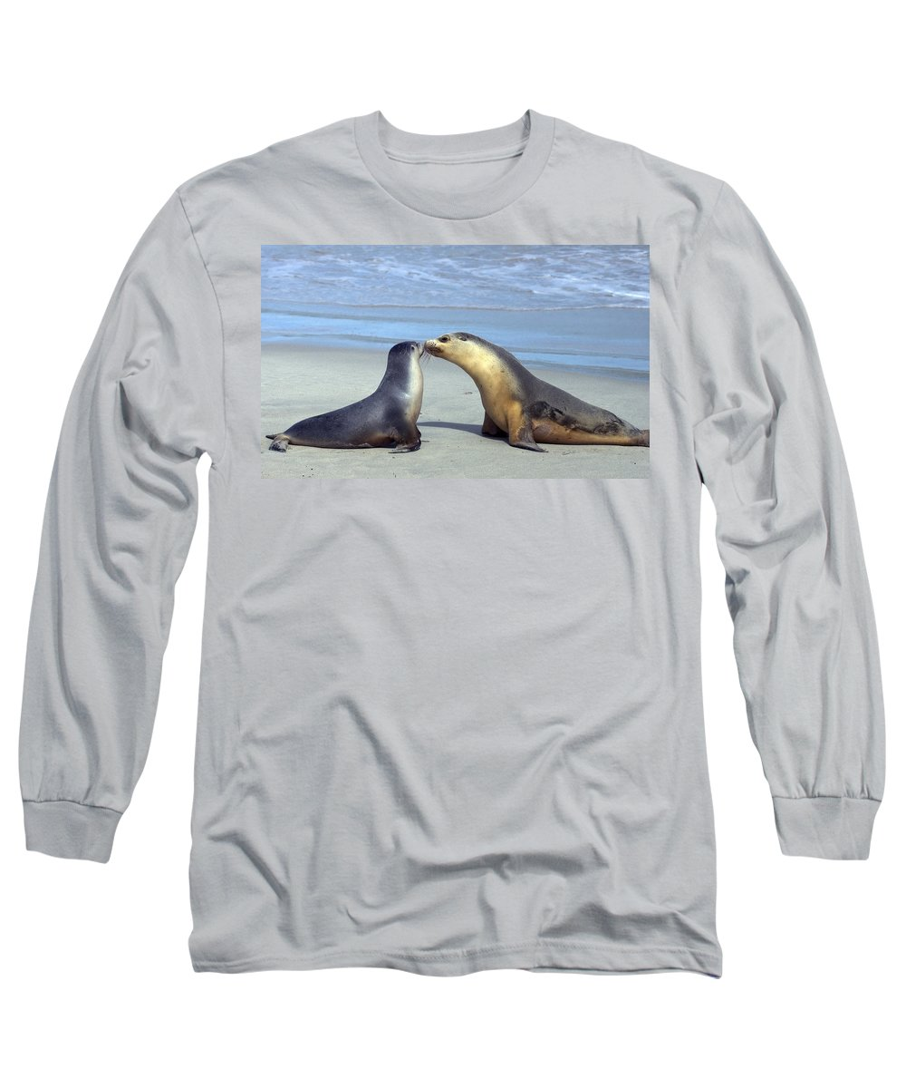 Sea Lion Long Sleeve T-Shirt featuring the photograph A Mothers Love by Mike Dawson