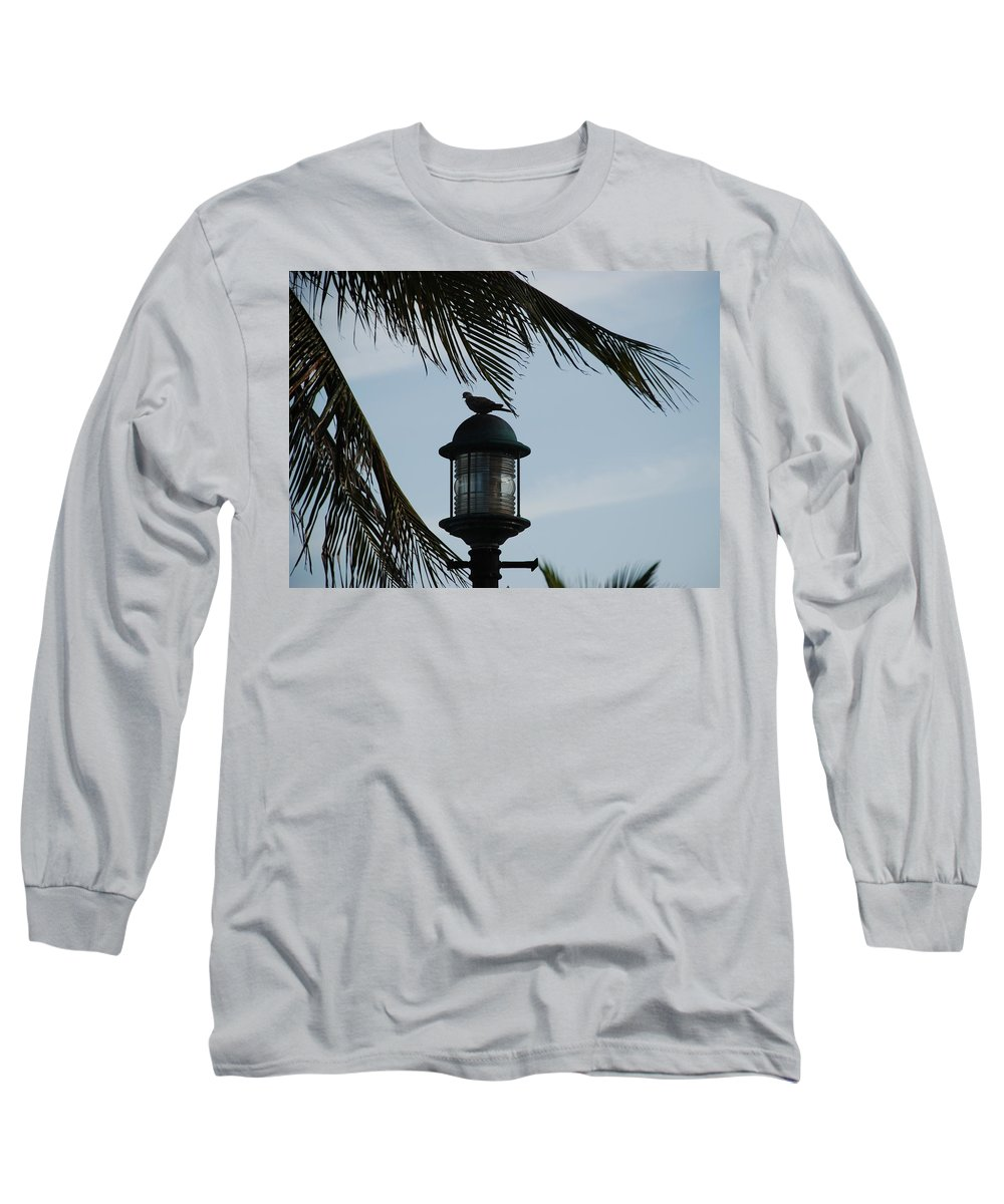 Lamp Post Long Sleeve T-Shirt featuring the photograph Bird On A Light by Rob Hans