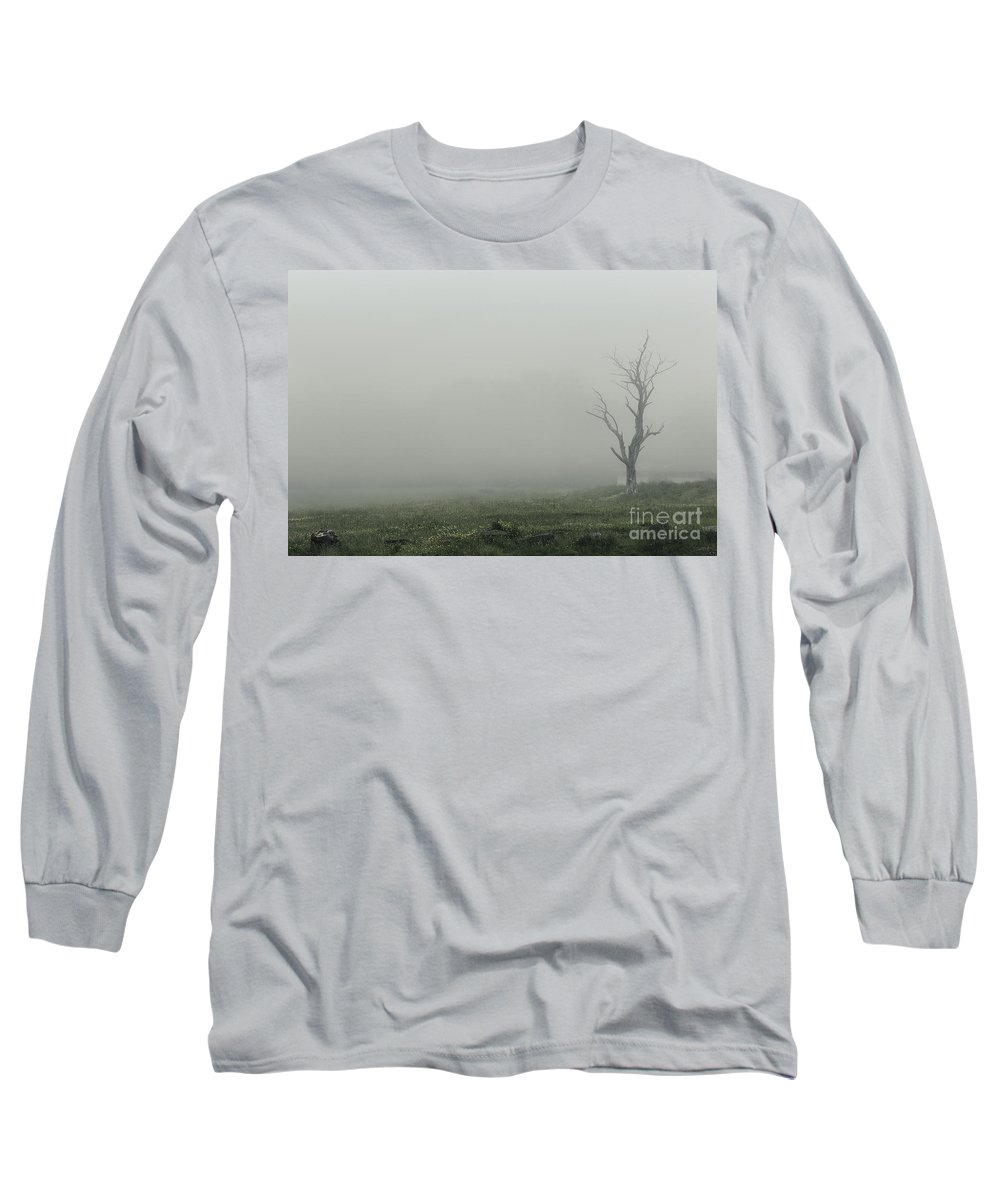 Petrified Forest Long Sleeve T-Shirts