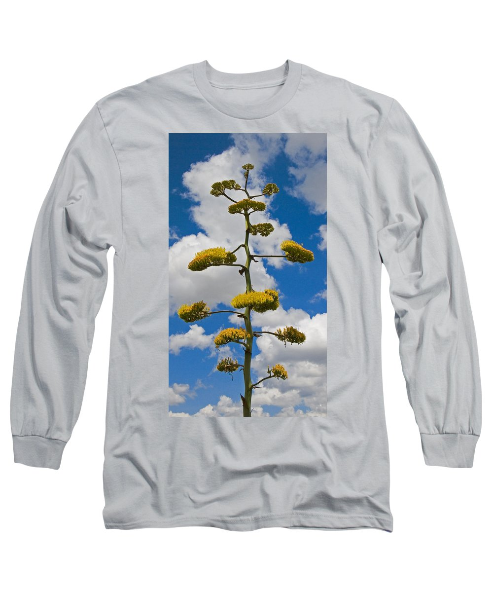 Blue Long Sleeve T-Shirt featuring the photograph Jacobs Ladder by Skip Hunt