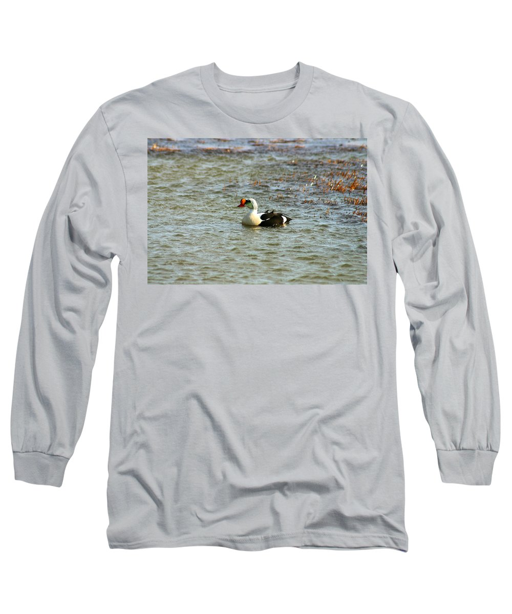 King Eider Long Sleeve T-Shirt featuring the photograph King Eider by Anthony Jones