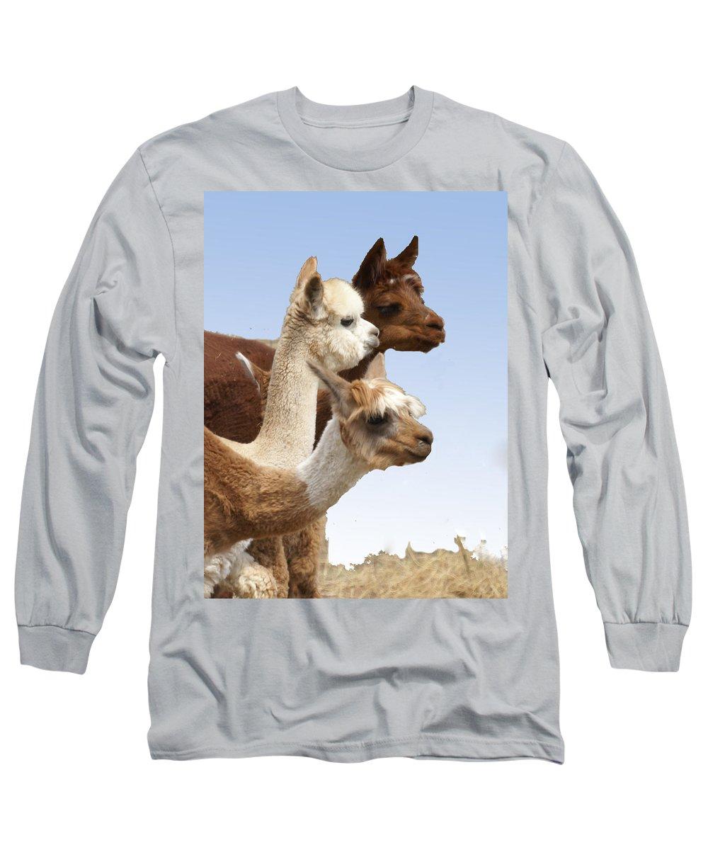 Llama Long Sleeve T-Shirt featuring the photograph Llama's Three by Heather Coen