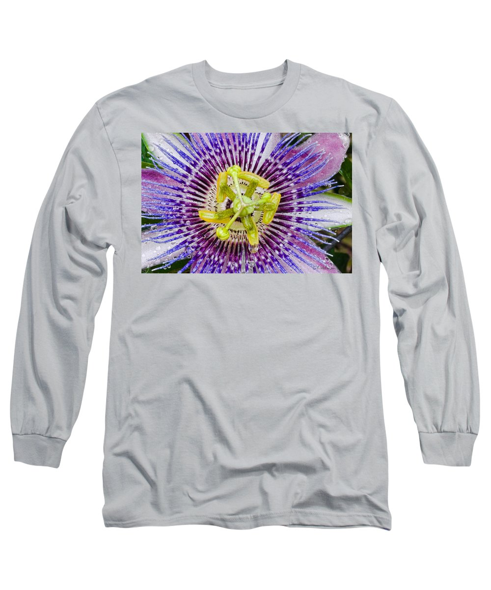 Passion Long Sleeve T-Shirt featuring the photograph Purple Radial by Christopher Holmes