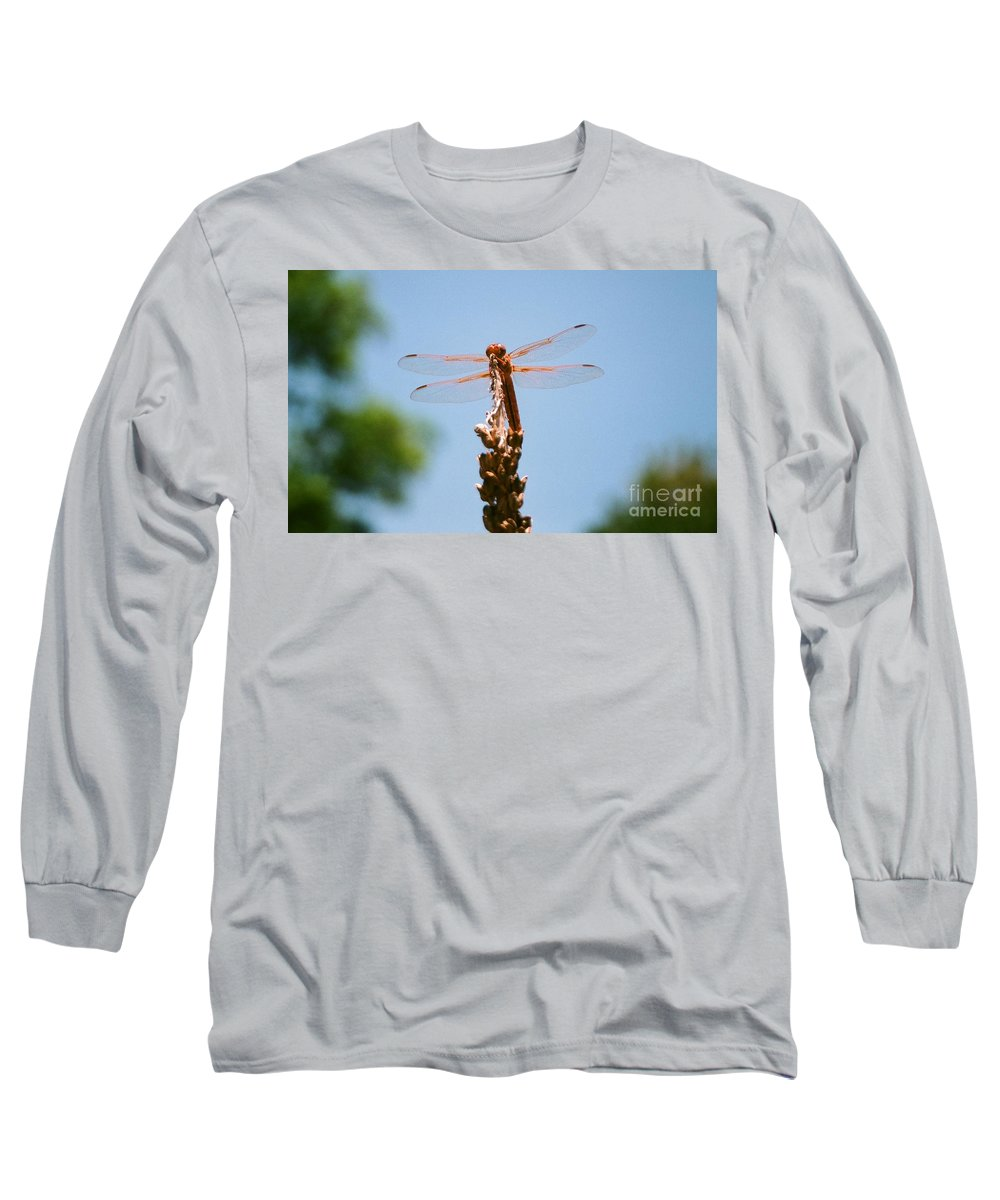 Dragonfly Long Sleeve T-Shirt featuring the photograph Red Dragonfly by Dean Triolo