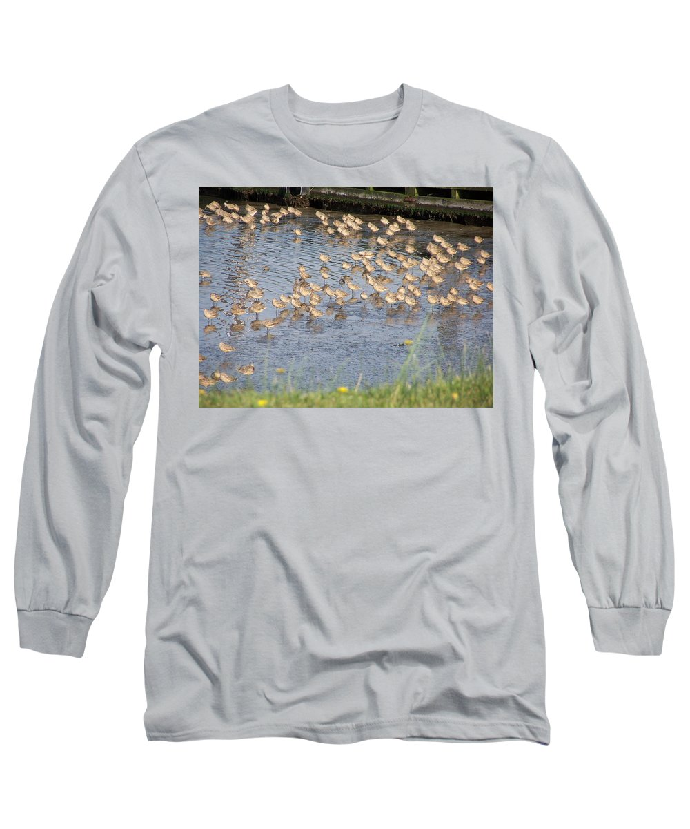 Seabirds Long Sleeve T-Shirt featuring the photograph The Plovers by Laurie Kidd