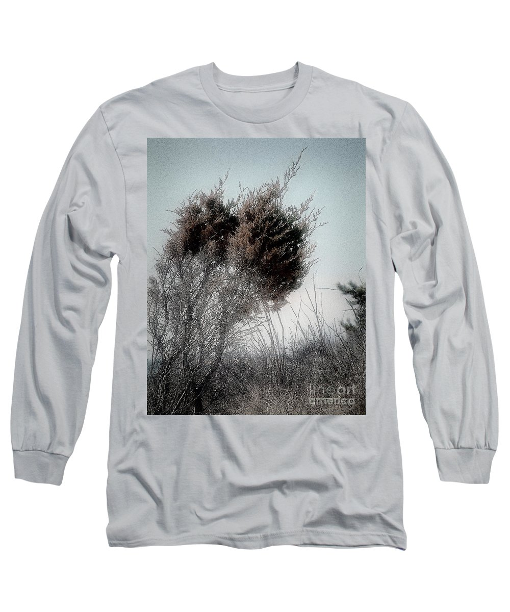 Beach Long Sleeve T-Shirt featuring the painting Winter Cedar by RC DeWinter